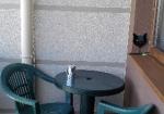 г Поморие Дрим 2 Уютная просторная студия от собственника
