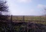 Продам землю в село Методиево.