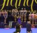 Сборная Болгарии по художественной гимнастике завоевала золото на этапе Гран-при